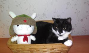 в России зимы настолько суровы, что ушанки носят даже котики IMAG0981