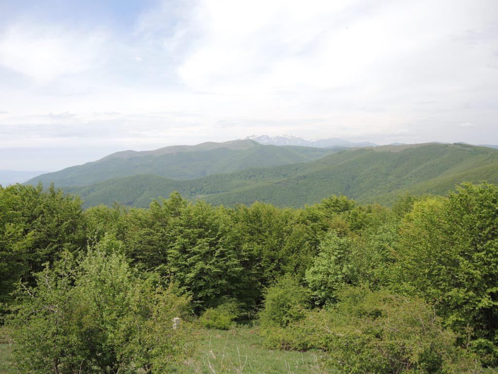 Болгария-2013 322