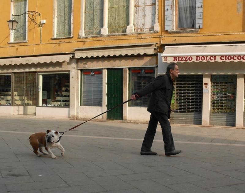 собака и человек1