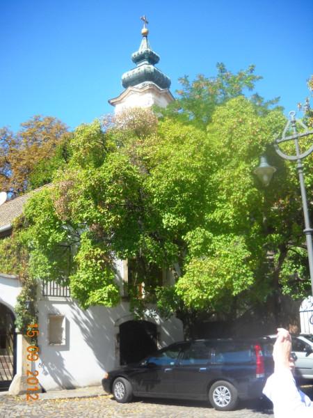 Сентендре. Сербская церковь