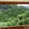 A view from the hut's window.