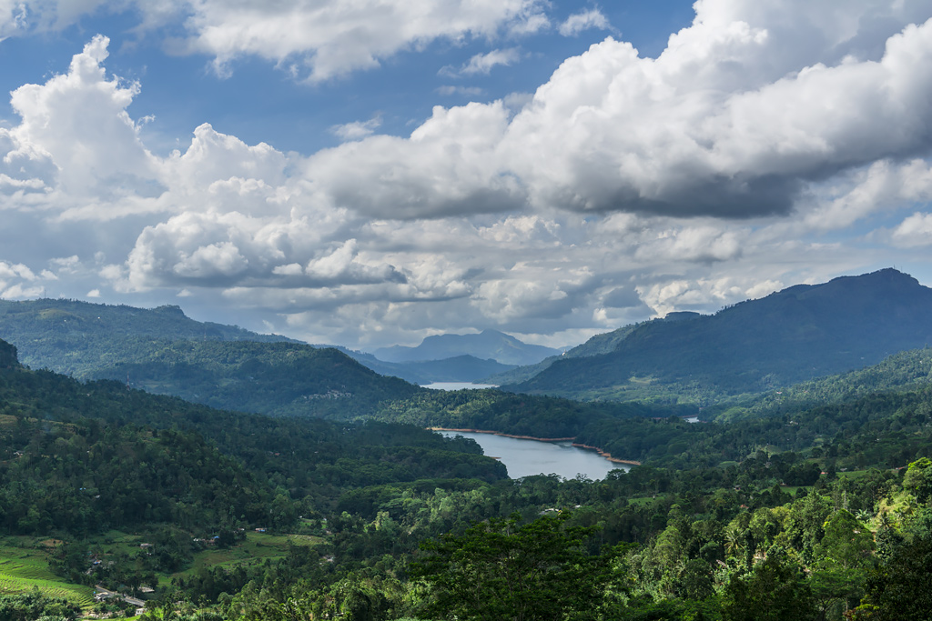 Нувара Элия Шри-Ланка. Что посмотреть на Шри-Ланке. Где купить чай на Шри-Ланке. Чайные плантации на Шри-Ланке. Фото чая.