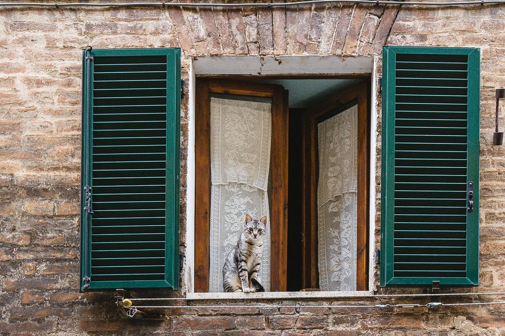 Интересные места Сиены