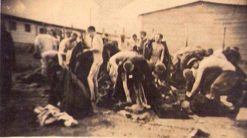 Фото с войны голые пленницы