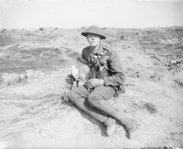 R.G.A, gunner with the goat mascot of his battery. Pilckem Ridge, 26 September 1917.