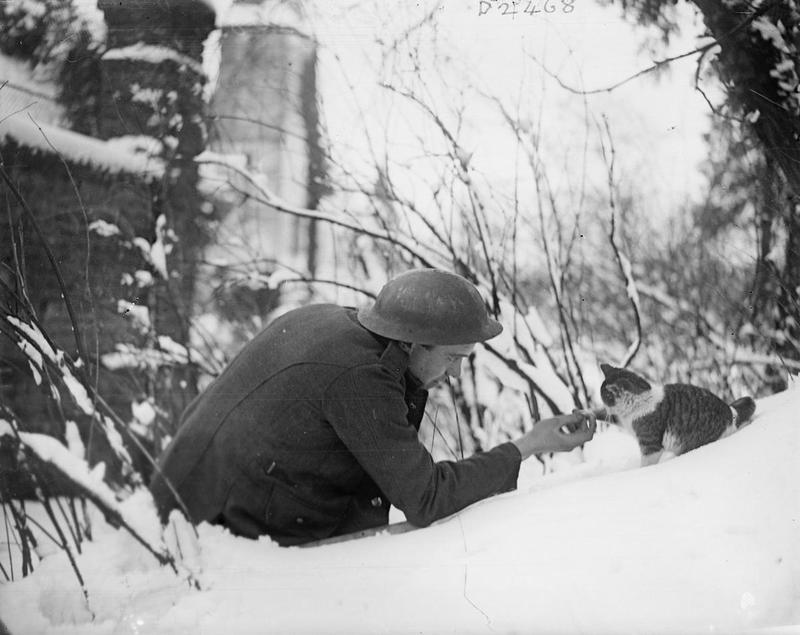 Neulette, 1917