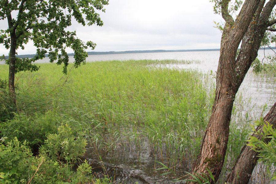 lake_Sho_center_of_Europe_2012_06_23_LJ_stanislav-05_1