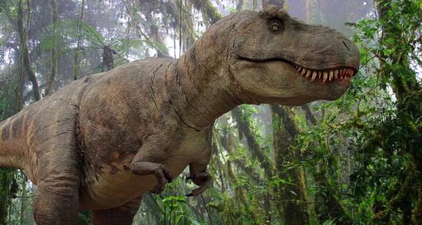 Какова была сила укуса тираннозавра