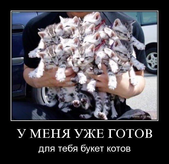 1263279925_demotivator_30