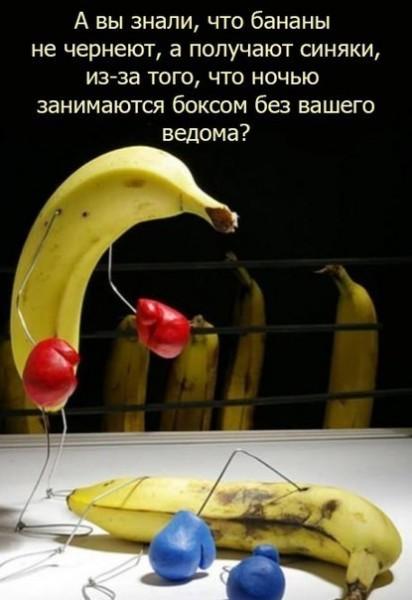 банановый бокс