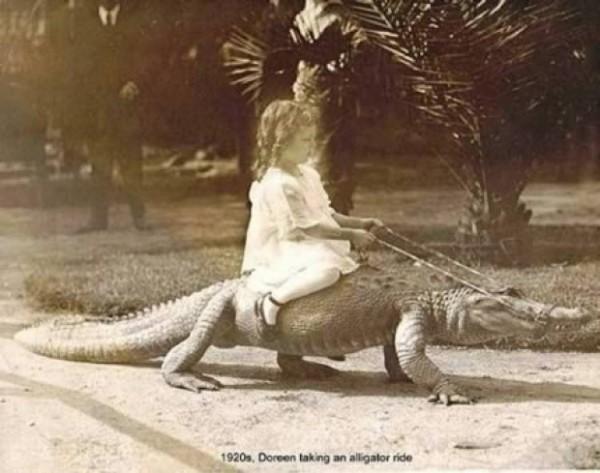 девочка верхом на алигаторе