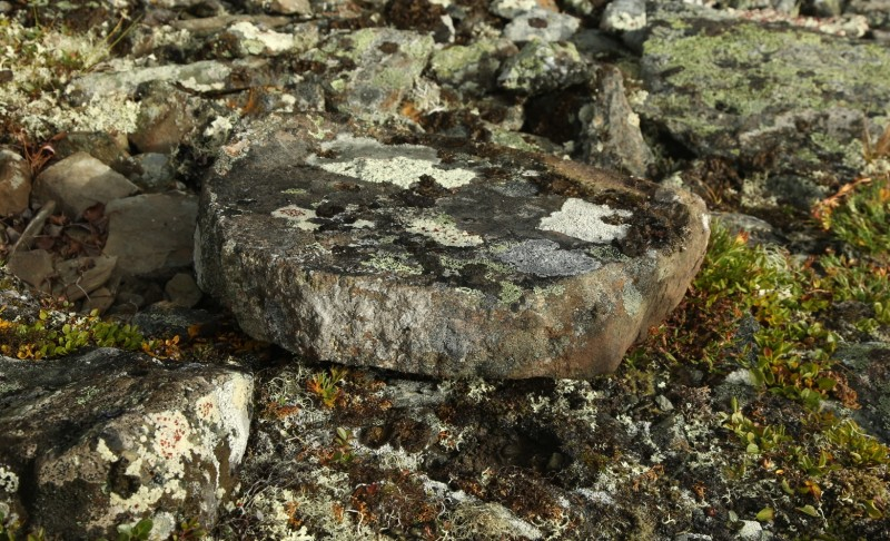Каменная жертвенная плита?