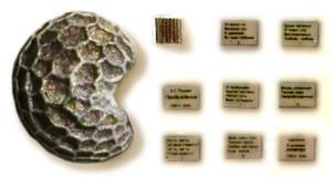 Самое маленькое издание А.С.Пушкина. Размер 0,35 х 0,25 мм