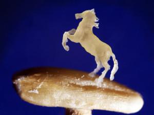 Лошадь из овса. Анатолий Коненко