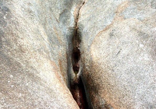 вагіни мами фото коупно
