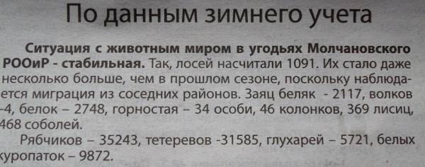 SAM_3918