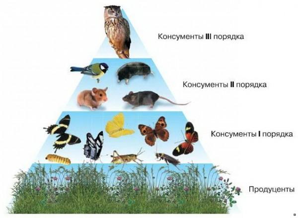 151romanbook.ru