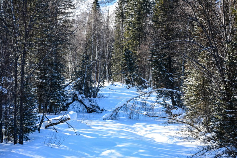 река Белая Уба