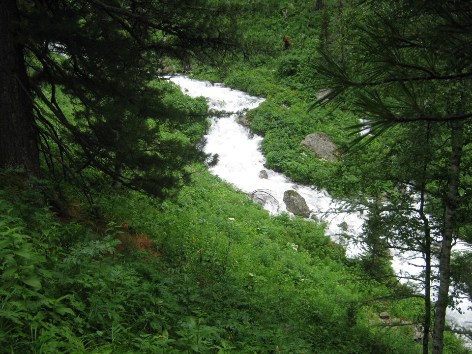 13 молочные реки.jpg