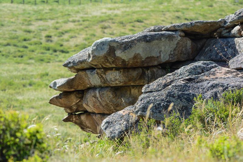 каменные звери сплюснуты