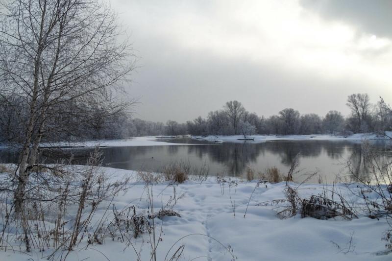 протока Иртыша
