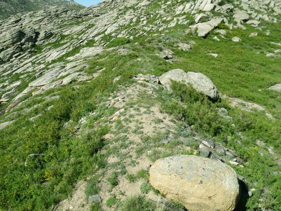 стена вверху между скалами (1).jpg