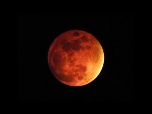 Space_Telescope_Planet_Mars_021859_29