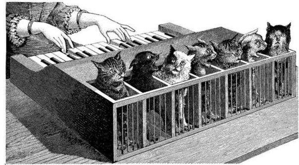 котячий клавесин
