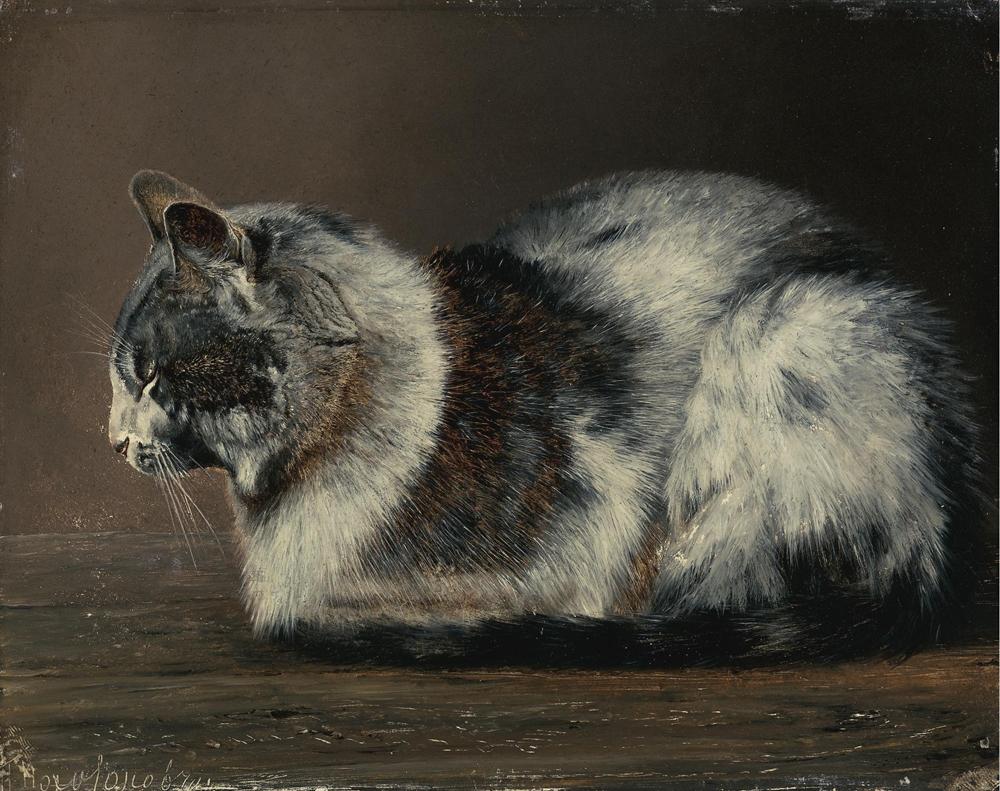 Ivan Pokhitonov - cat