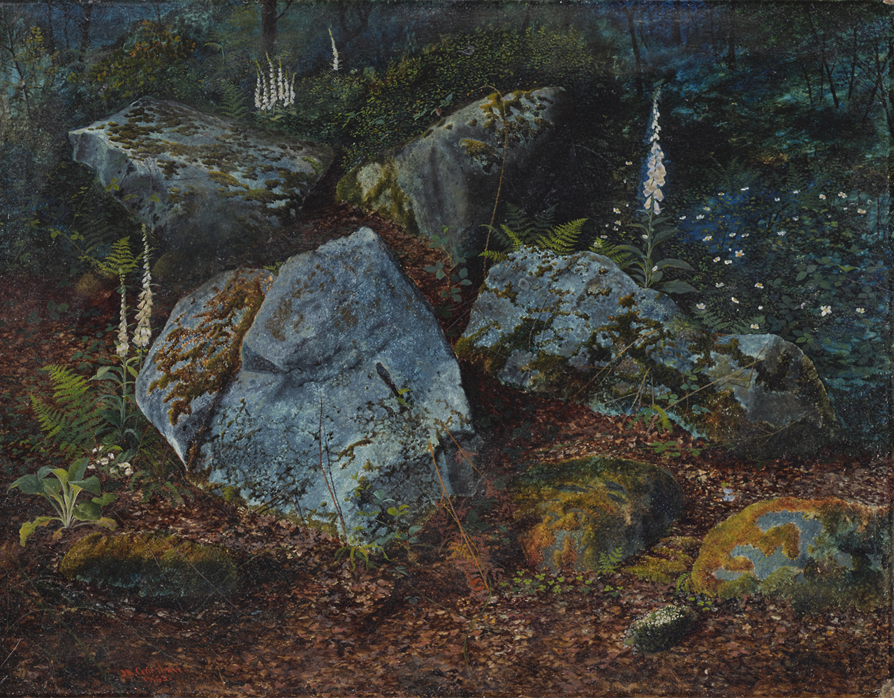 John Atkinson Grimshaw - Boulders in Storsforth Wood, 1863