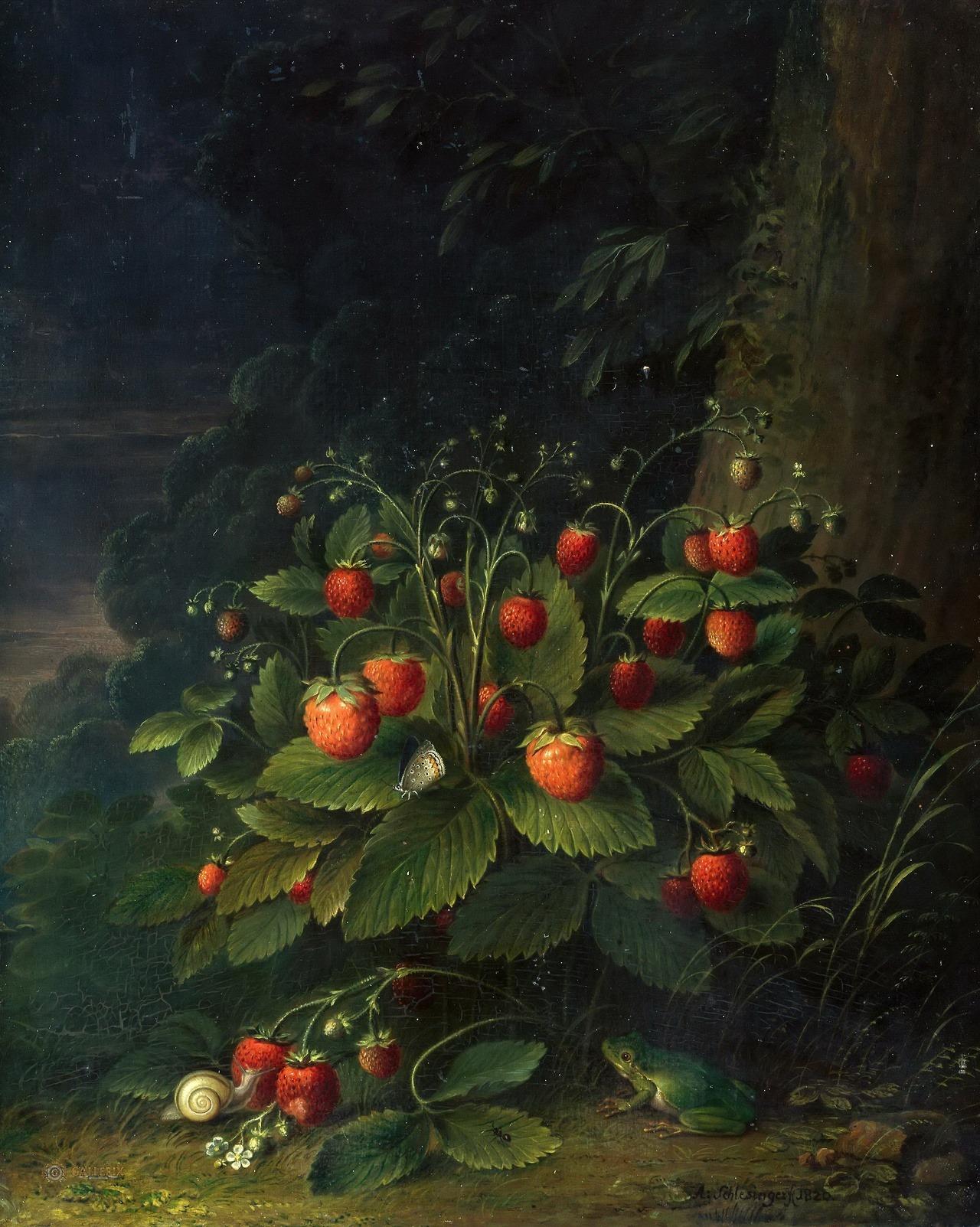 Stillleben mit Erdbeeren, 1820, Johann Adam Schlesinger