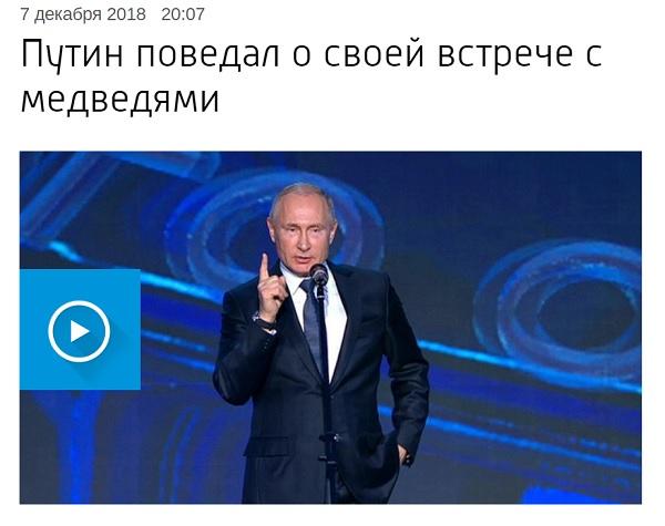 Путин поведал о своей встрече с медведями