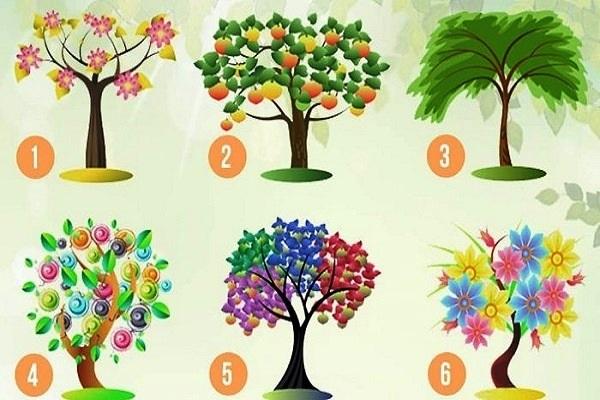 Выберите одно из шести деревьев. Ваш выбор укажет на Ваши скрытые тайны