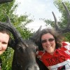 J plus iron deer plus me