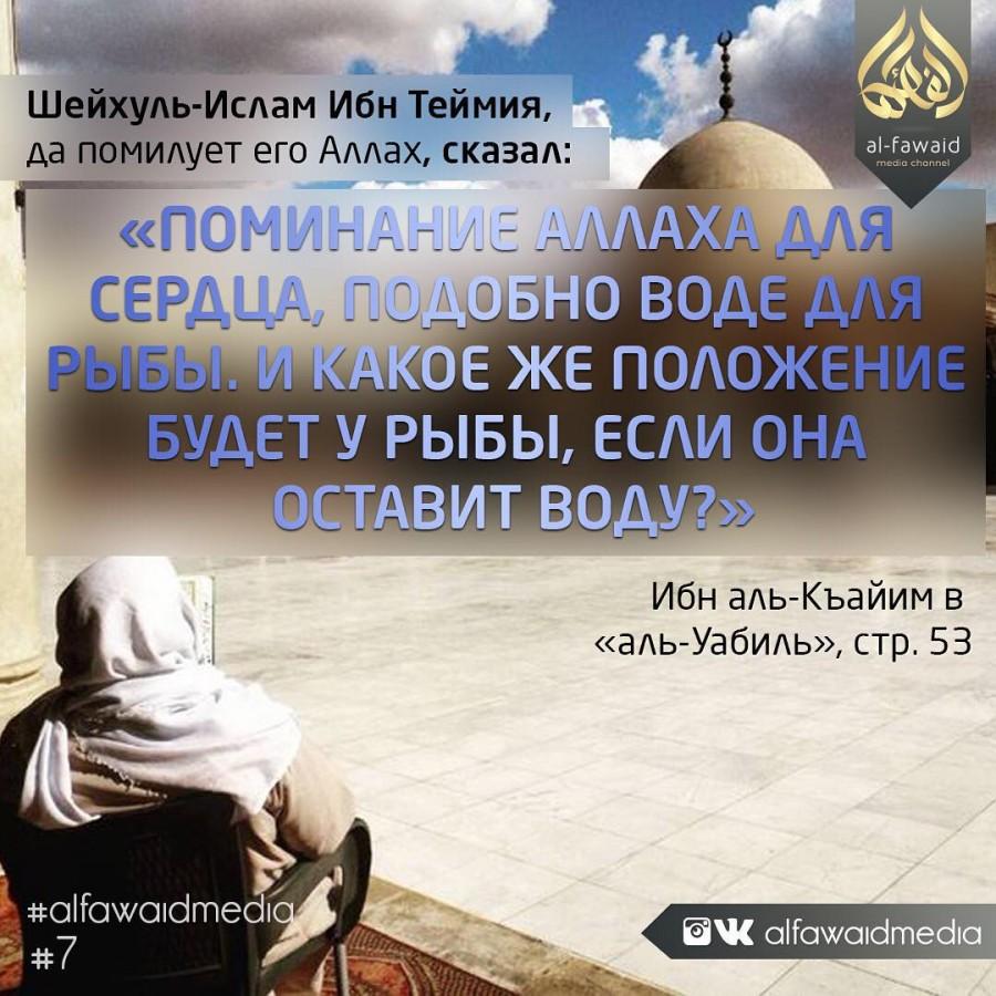Котят надписями, мусульманские картинки с надписью по таджикски