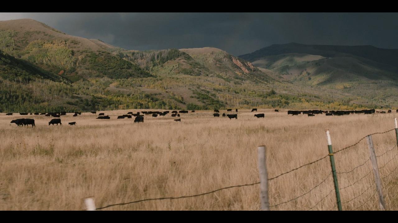Yellowstone.S01E01.AMZN.WEBRip.1080p.NewStudio.mkv_20180904_023337.605