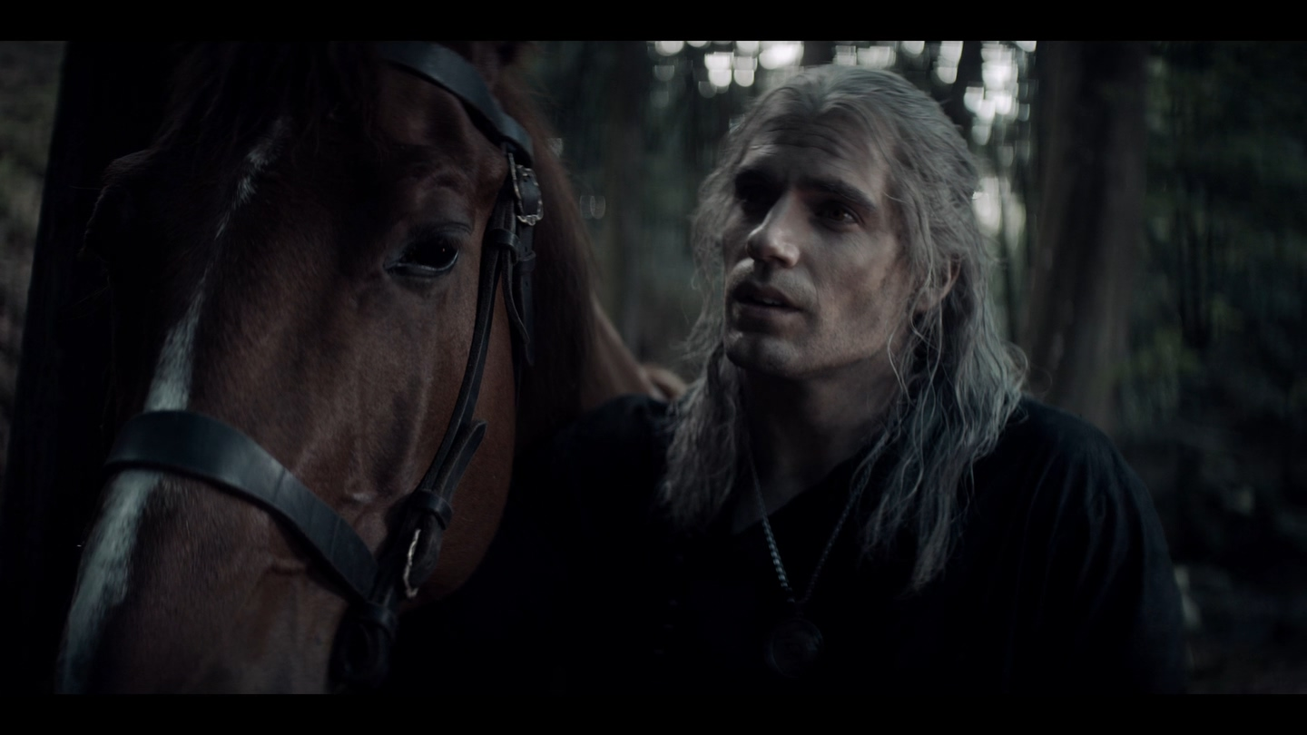 The.Witcher.S01E01.The.End's.Beginning.1080p.WEB-DL.DUB.EniaHD.mkv_20191220_234233.026