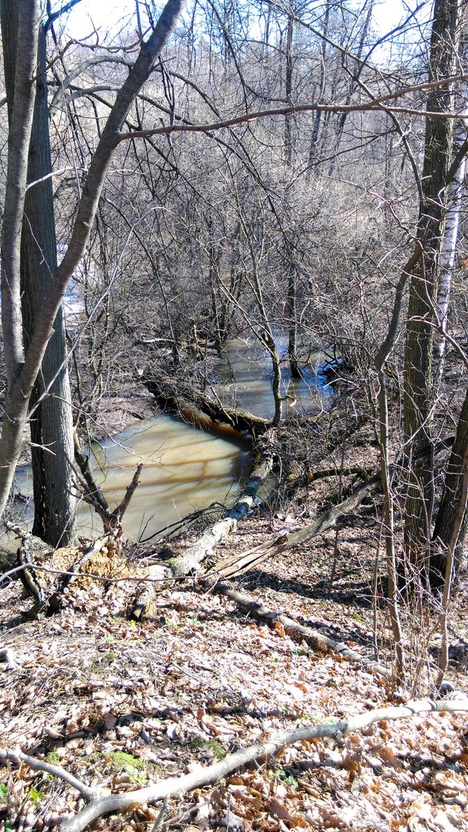 Указанного на карте мостика из досочек я не нашел, но ниже по течению увидел это...