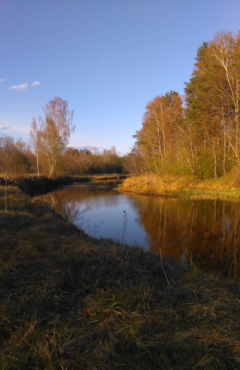 ... к реке Логовежь. Тихое красивое место...