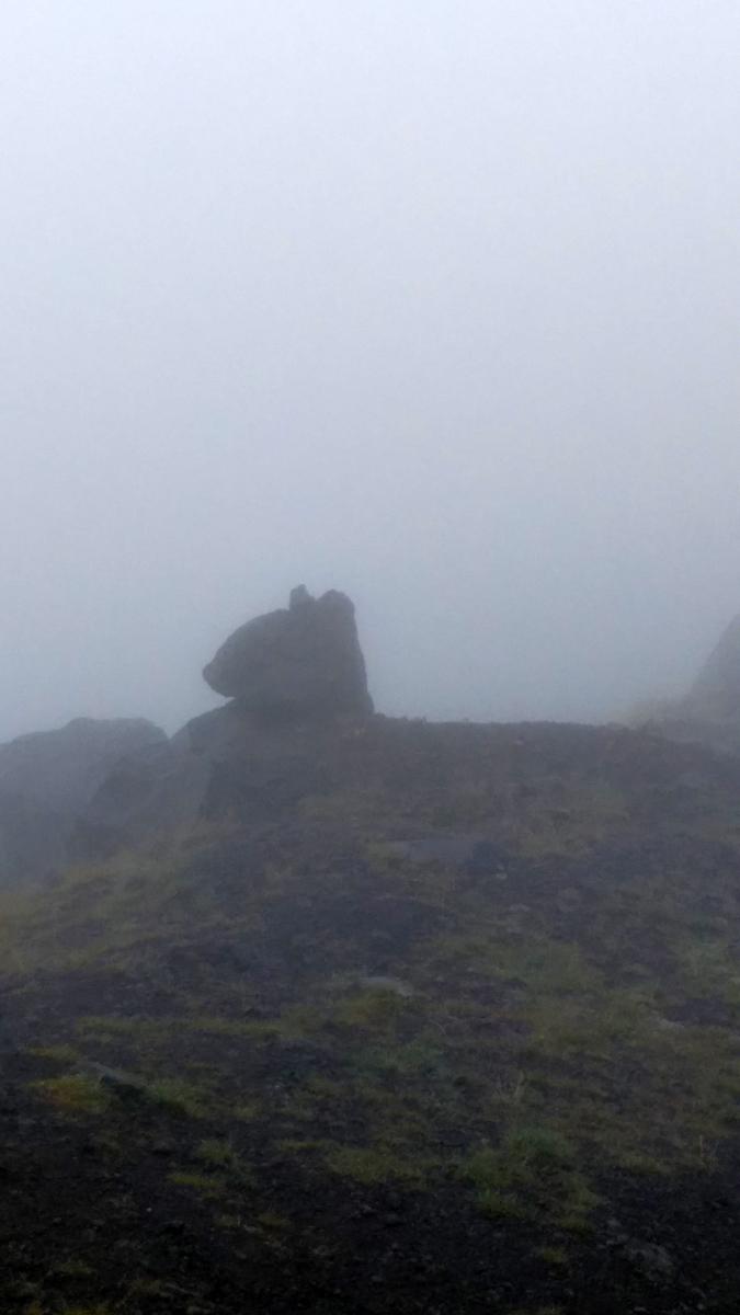 А уже ниже Обсерватории и не доходя до 95-го пикета в тумане видна, то ли кошка, то ли рысь... Но это, всего лишь, камни...