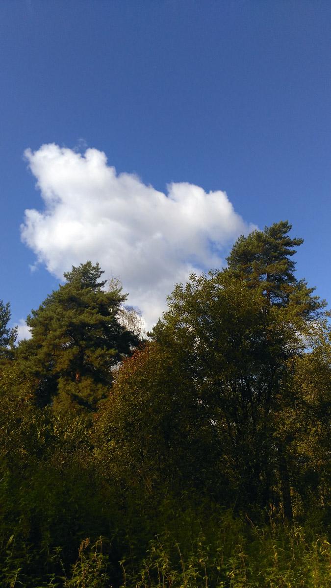 Погода отличная! Природа красивая)))