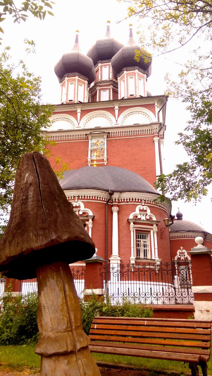 Около него такие интересные грибы...