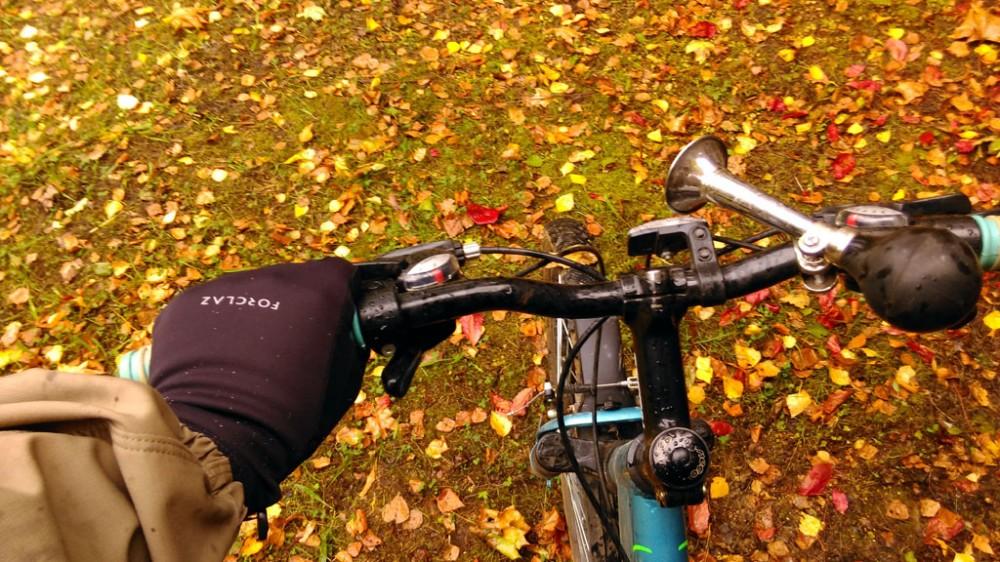 Почти все лето не прикасался к велосипеду, а тут с удовольствием прокатился, не взирая на моросящий дождь.