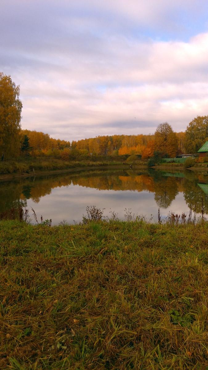 А это уже Татарский пруд. Он расположен в Юго-Восточной части Белых Столбов.