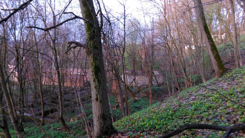 Помимо флигеля, на территории еще несколько руин. И интересный рельеф.