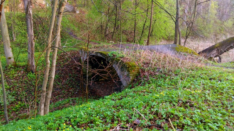 Мост через цепочку прудов барской усадьбы. Пруды, правда, обмелели.