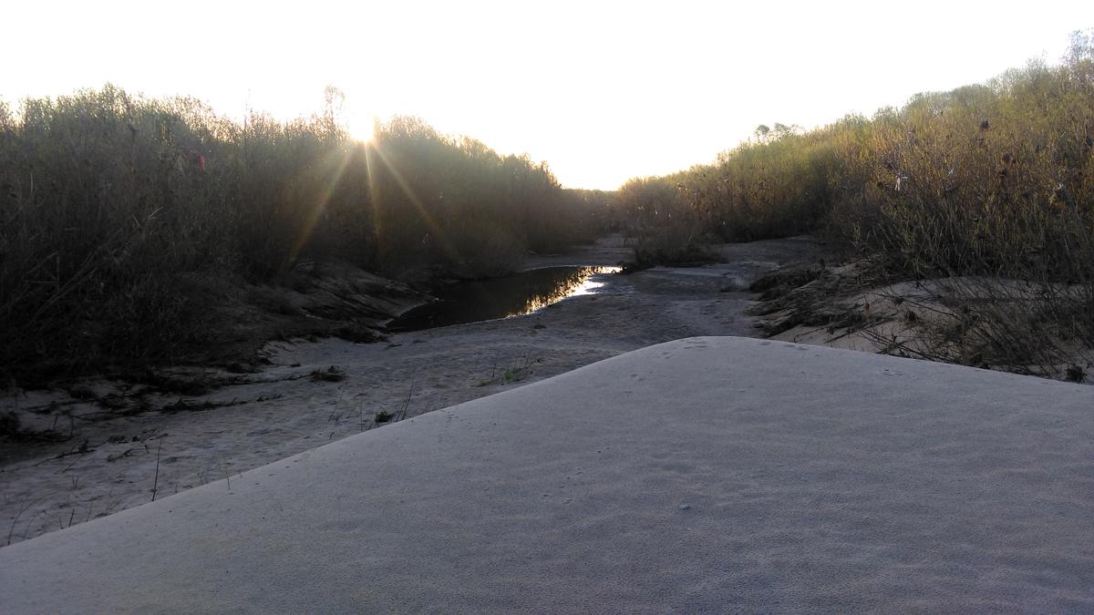 День третий заключительный. Утренняя прогулка по острову. Остров протяженностью около 900 метров. Полностью из белого песка. Есть свои мини озерца. Много птиц.