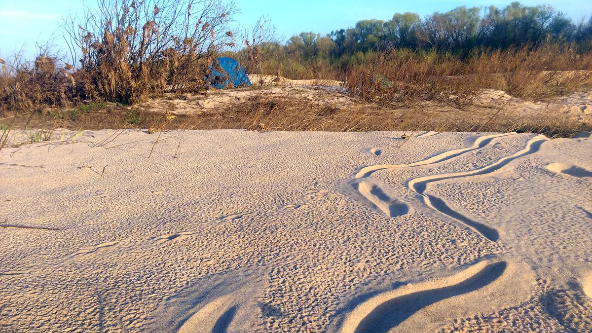 Долгая дорога в дюнах (с)
