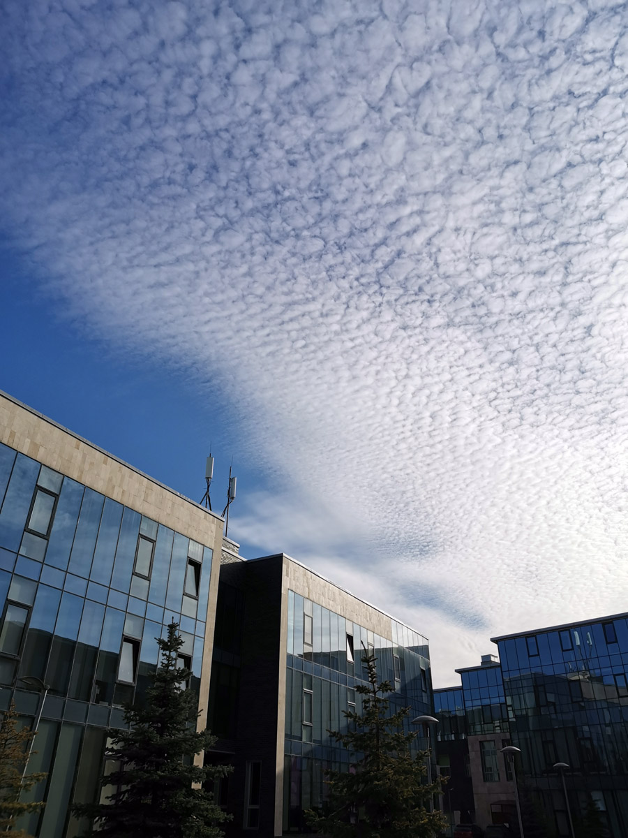 Красивое небо над родным бизнес центром... Первая после отпуска и последняя перед карантином рабочая неделя марта....