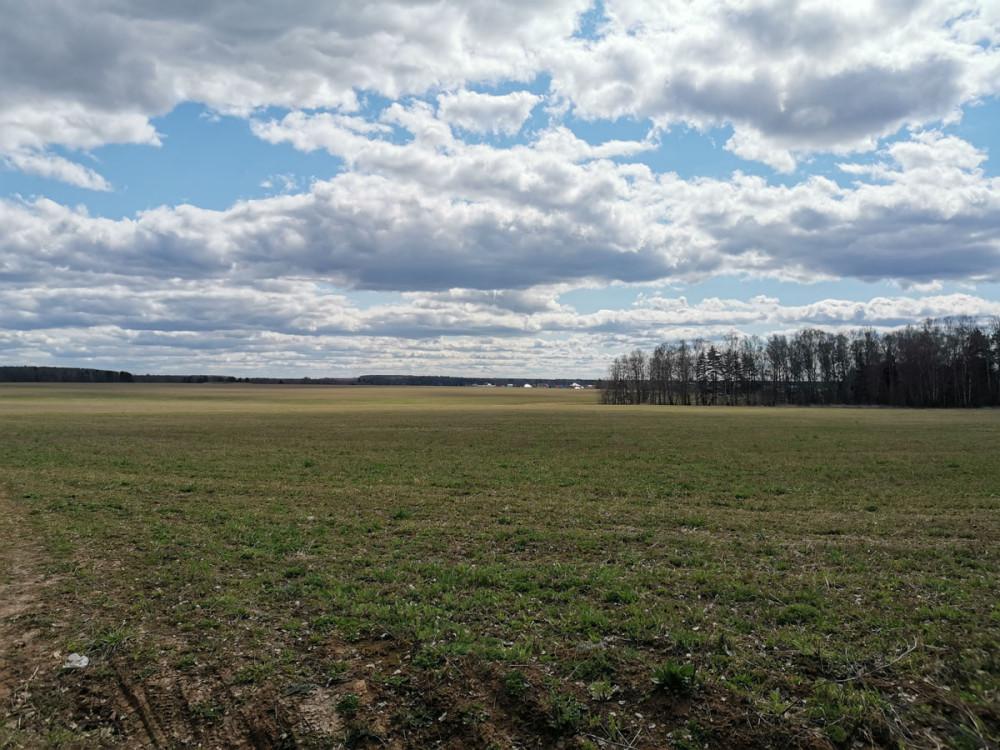 ... вышел на действующее поле... Снова любуюсь облаками.
